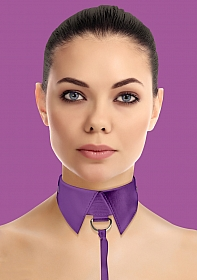 Classic Collar with Leash - Purple