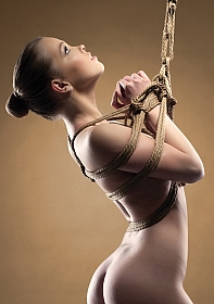 Shibari Rope - 10m - Brown